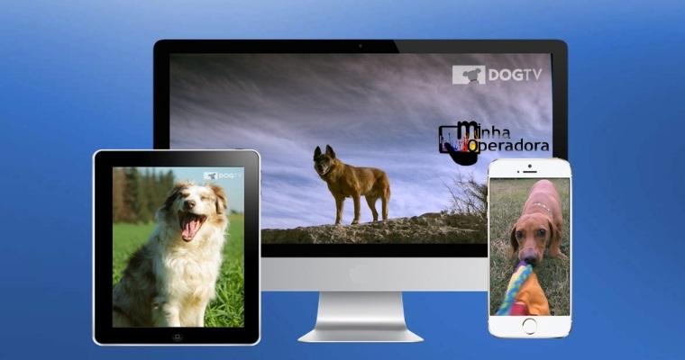 Dog TV será lançado pela NET, com direito a período gratuito