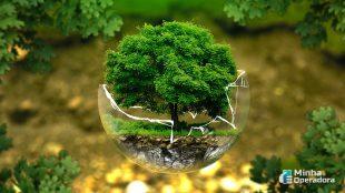 Claro, Vivo, Oi e TIM se comprometem com iniciativa ambiental