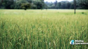 TIM expande 4G em regiões agrícolas