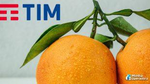 4G da TIM será utilizado para fortalecer agronegócio