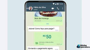 WhatsApp promete retomar serviço financeiro no Brasil