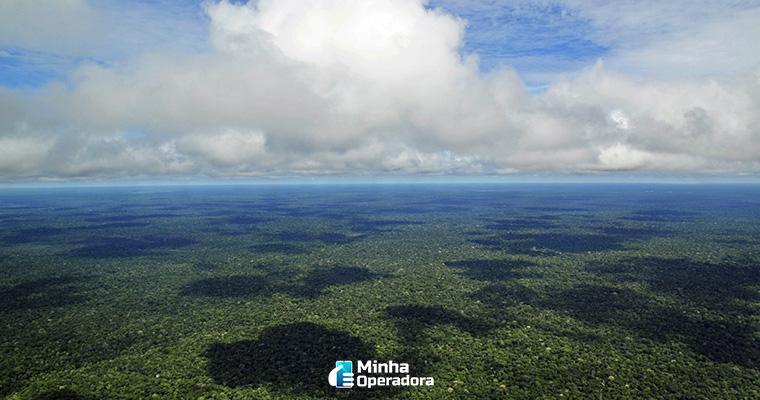 Imagem: Amazonas (Wikipedia)