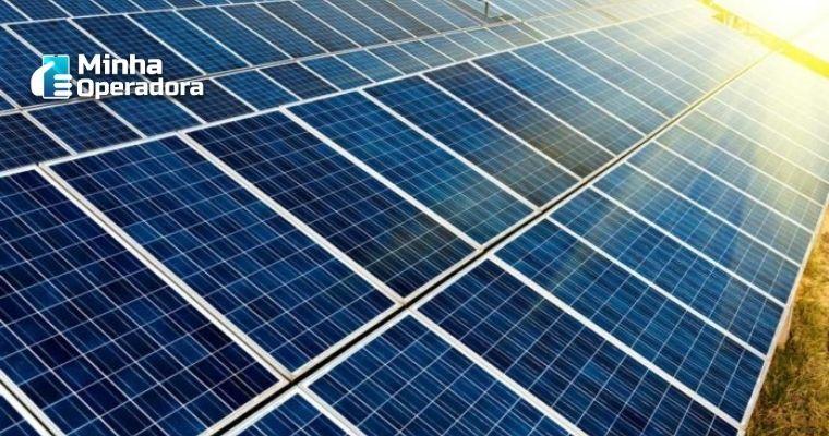 Diversas placas solares juntas.