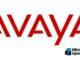 Logotipo da Avaya em vermelho com o fundo branco.
