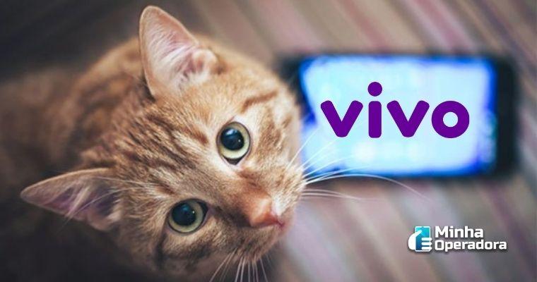 Gatinho olhando para quem observa a imagem e um  próximo ao pet traz o logotipo da Vivo em roxo.