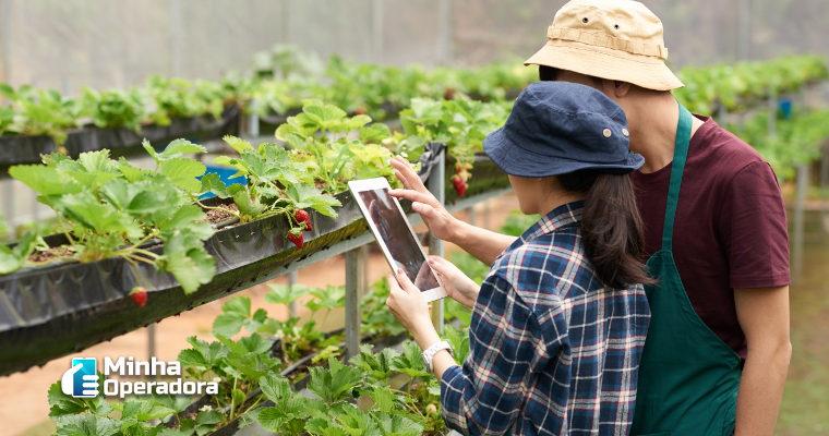 Instituto TIM lança novo curso gratuito voltado para o mercado do agronegócio