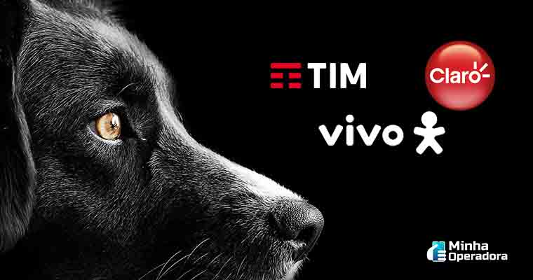 TIM, Vivo e Claro vão perder R$ 30 milhões em multa